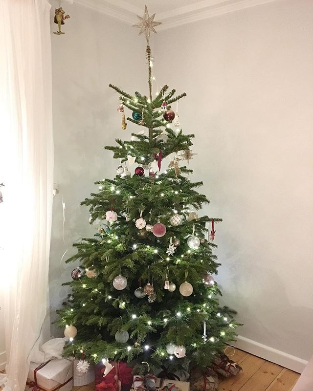 Freiakatarina Instagram Billeder Og Videoer Holiday Decor Christmas Tree Instagram