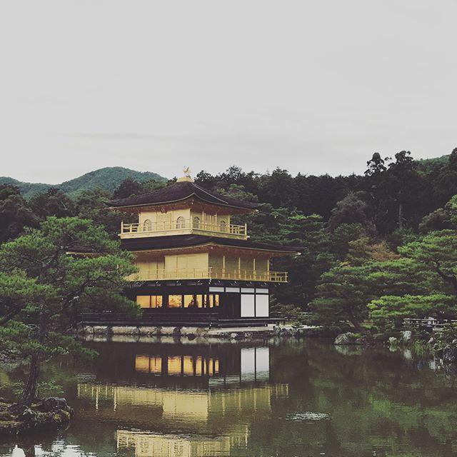 Kinkaku-ji (Temple of the Golden Pavilion) is a Zen Buddhist temple in Kyoto, Japan. 鹿苑寺(金閣寺),座落於日本京都的日本佛寺。 #Kyoto #temple #japan #kinkakuji #golden #gold #architecture #travel #金閣寺 #金 #日本 #旅行 #京都 #建築