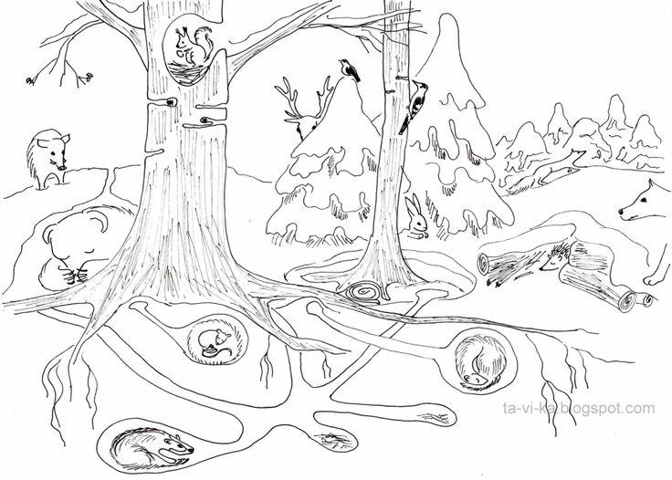 раскраска Зимний лес