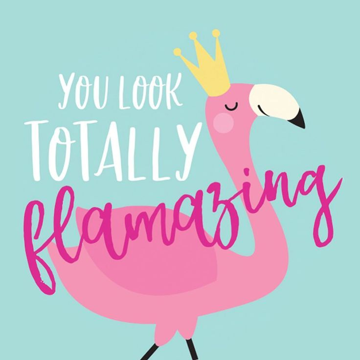 «you look totally FLAMAZING Available as a pocket mirror or greeting card #flamingo…»