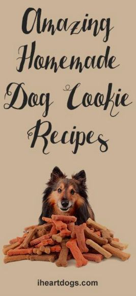 Amazing Homemade Dog Cookie Recipes