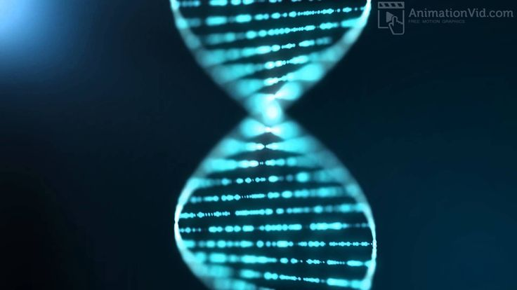 Blue DNA Sequence Background Animation - Free Moving Wallpapers at http://www.AnimationVid.com