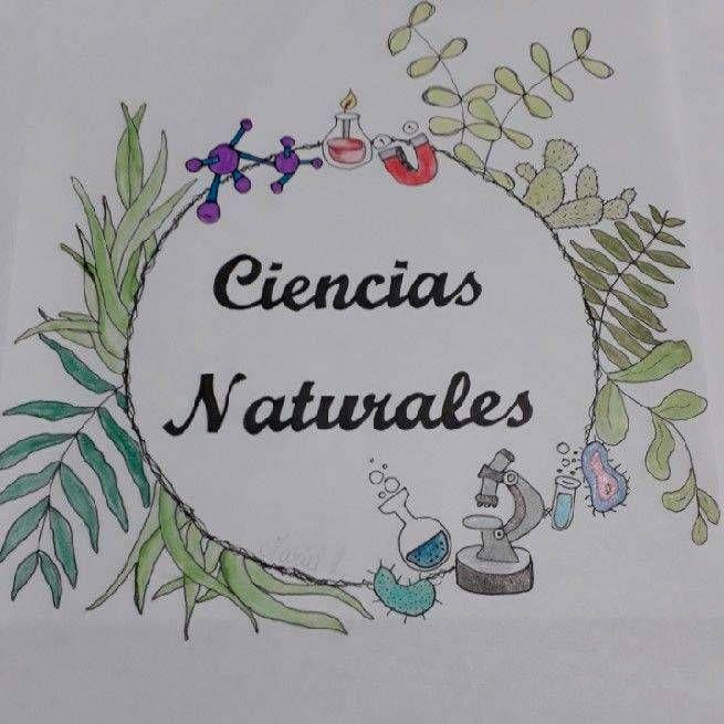 Caratulas De Ciencias Naturales Tumblr Buscar Con Google Caratulas De Ciencias Caratulas De Ciencias Naturales Portada De Cuaderno De Ciencias