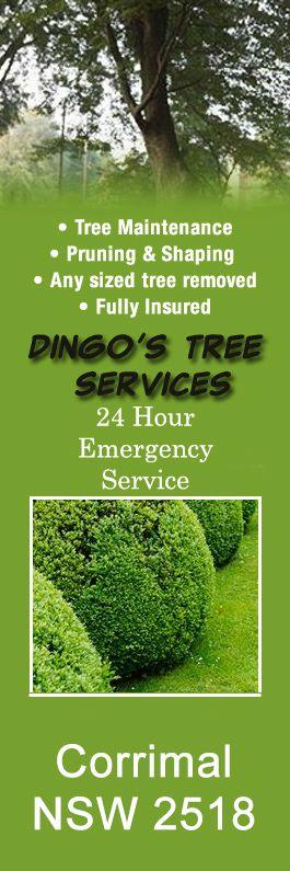 Dingo's Tree Services - Tree & Stump Removal Services - Corrimal