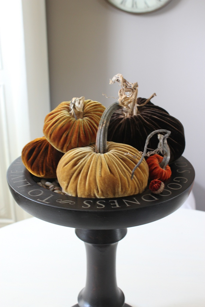 Pllush Pumpkin giveaway!