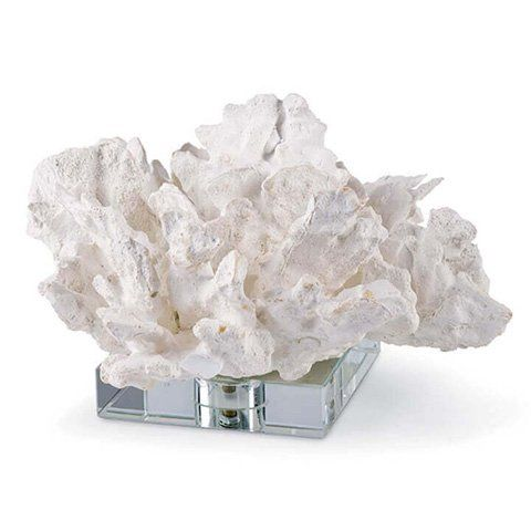 White Cabbage Coral on Crystal Main Image