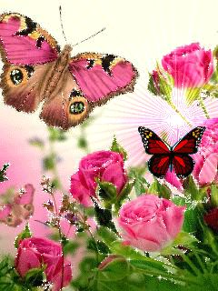 """Download 240x320 animated picture """"Flowers and Butterflies"""" for mobile phones. Insects"""