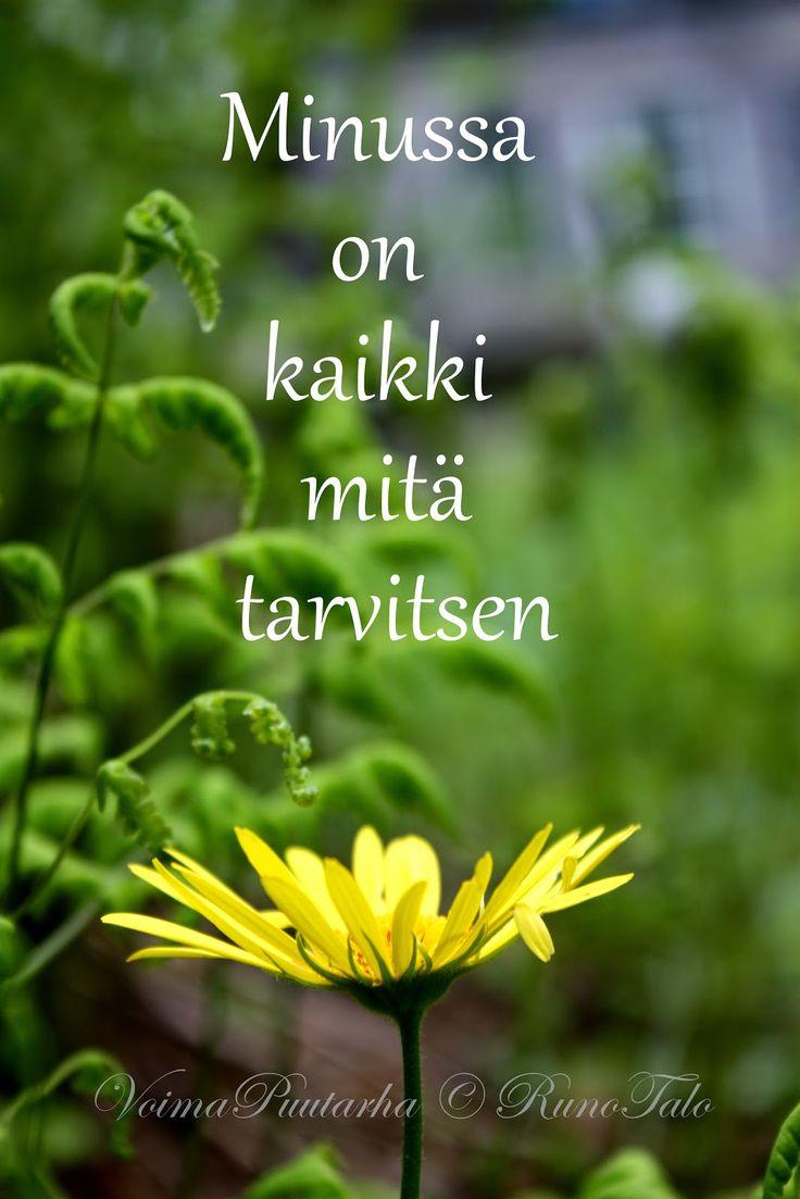 RunoTalon voimapuutarha: Voimarunot & voimakortit viikolle 15: Läsnäolon harjoitus