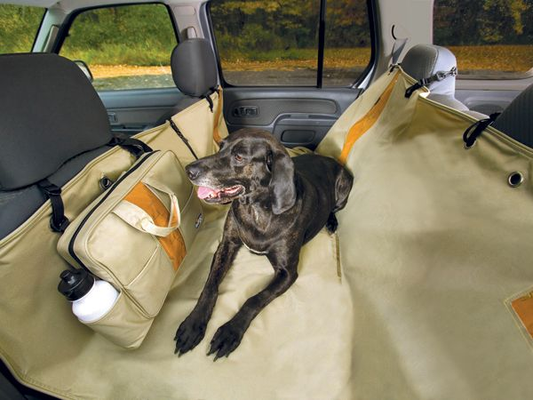 Kurgo Wander Dog Hammock - http://www.autoanything.com/pet-travel/69A5405A0A0.aspx
