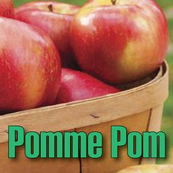 Pomme Pom is a creamy and flamboyant mix of granny smiths and golden delicious, which gives a depth of flavour and succulence with every draw. Crisp and juicy freshness bursts into your palette as you inhale the purest apple taste around, leaving your taste buds tingling with happiness and fulfilment. You could almost add some pastry and make yourself a pie!