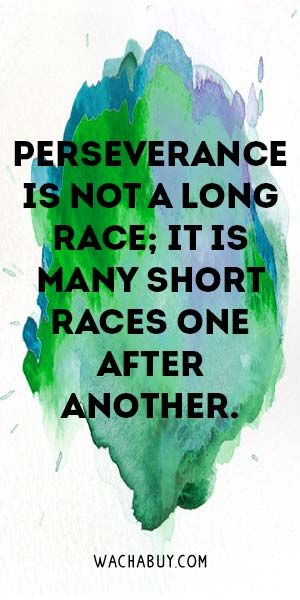 #quote #inspiration / Perseverance Quotes To Empower You to Never Give Up