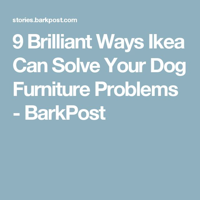 9 Brilliant Ways Ikea Can Solve Your Dog Furniture Problems - BarkPost