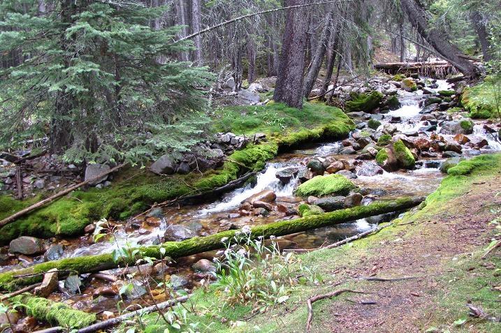 Trail of Seven Bridges; Crowsnest Pass, Alberta