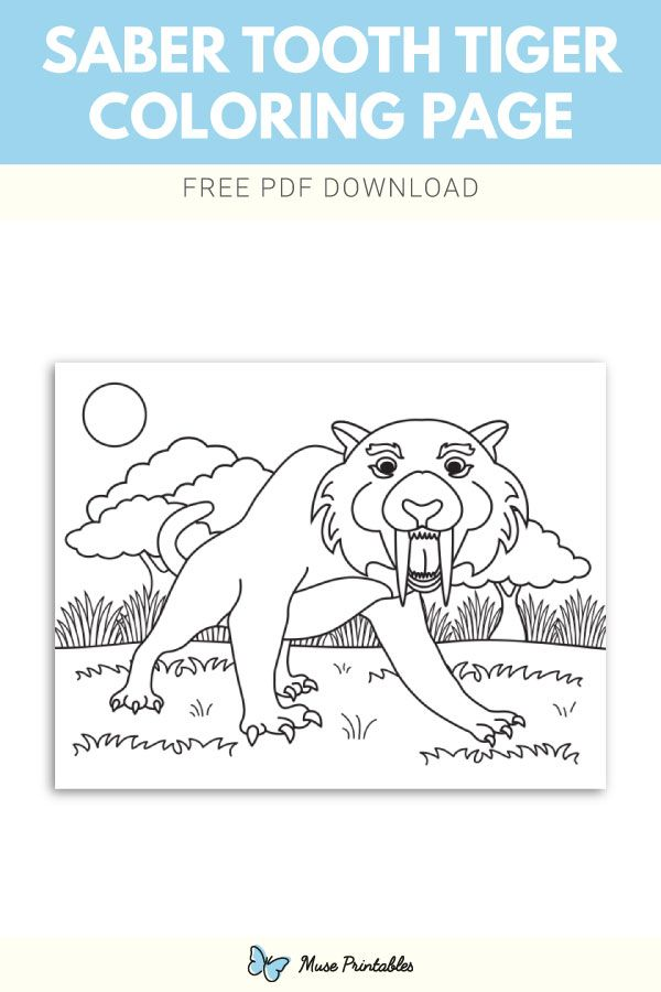 Free Sabre Tooth Tiger Coloring Page Coloring Pages Sabertooth Color