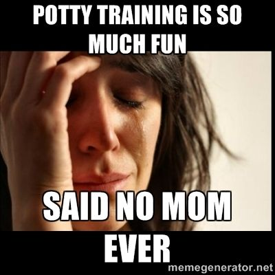 4 Hilarious Potty Training Memes – Adios 2 Diapers! #pottytraining