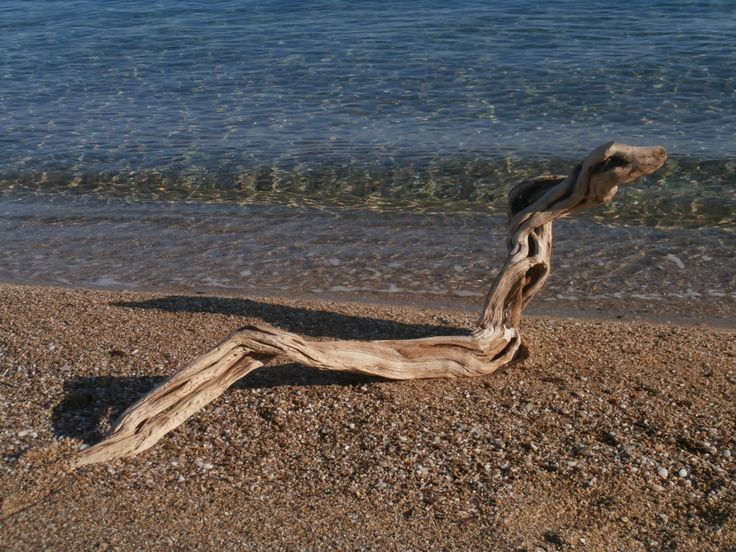 A great piece of driftwood that looks exactly like a sea-serpent - with a very friendly face!  A few sharp pieces were taken away and the entire piece was cleaned and sanded, then a light varnish applied to give it a more authentic finish.  Now we're just looking for a name for him......