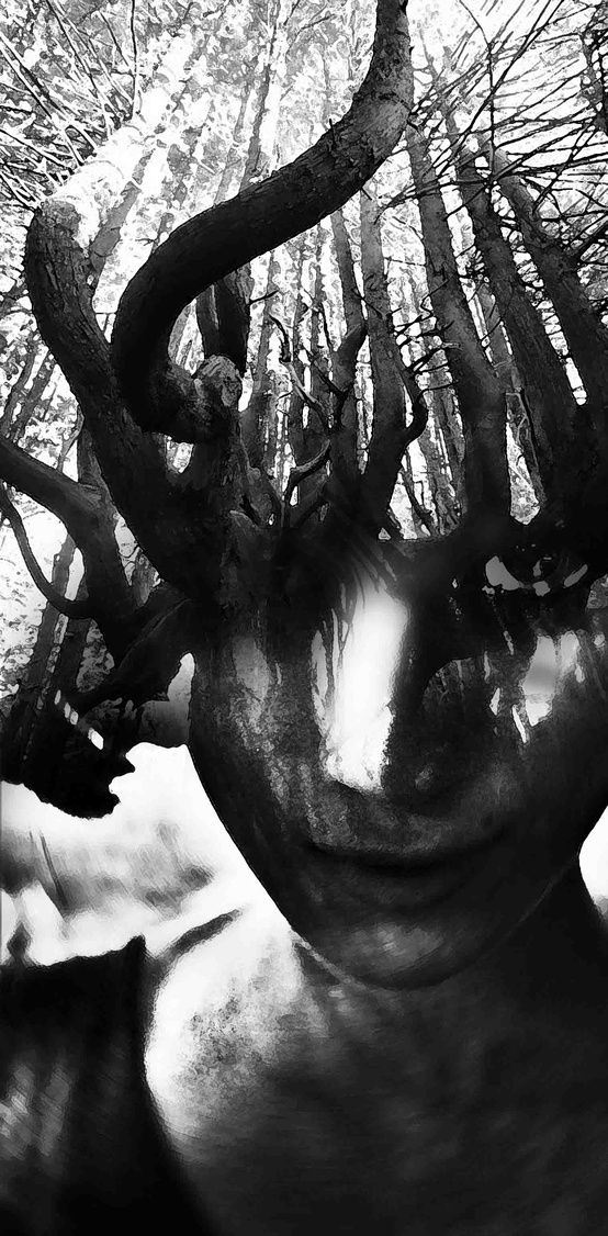 "Thanks for a message from Antonio Mora, I know this is ""treegirl"" by Antonio Mora. Genius work!"