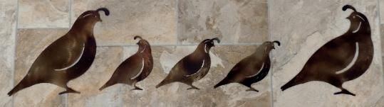 These Metal Quail Wall Art Silhouettes will look great as they scurry across your wall. Add a touch of the Southwest to your decor with these Quail wall hangings. You can purchase these Quail individually or as a set. The set comes with 2 of Quail A, 1 of Quail B, 1 of Quail C and 1 of Quail D: that's 3 Small and 2 Large Quail. You can make any combination of 3 small and 2 large Quail that you like. Send me an email at richlin76-hfly@yahoo.com or give me a call