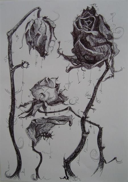 Shelly Stracey, dead roses