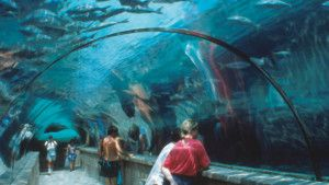 Atlantis- A must visit