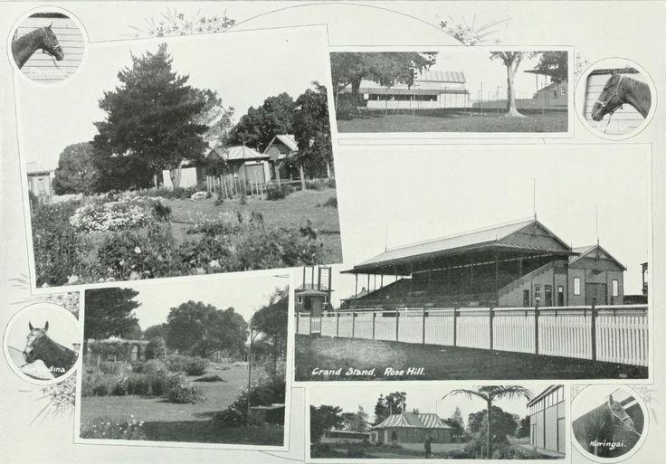 Views of Rosehill Racecourse, near the Parramatta River NSW c1910