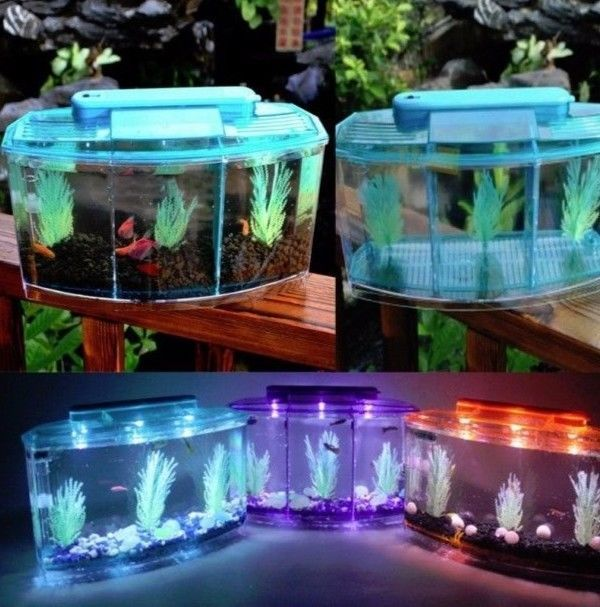 25 Best Ideas About Small Fish Tanks On Pinterest Glass