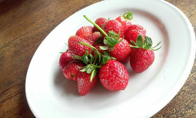 Strawberry from Ketep Pass