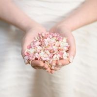 Getting married and would like to try some free Shropshire Petals wedding confetti?