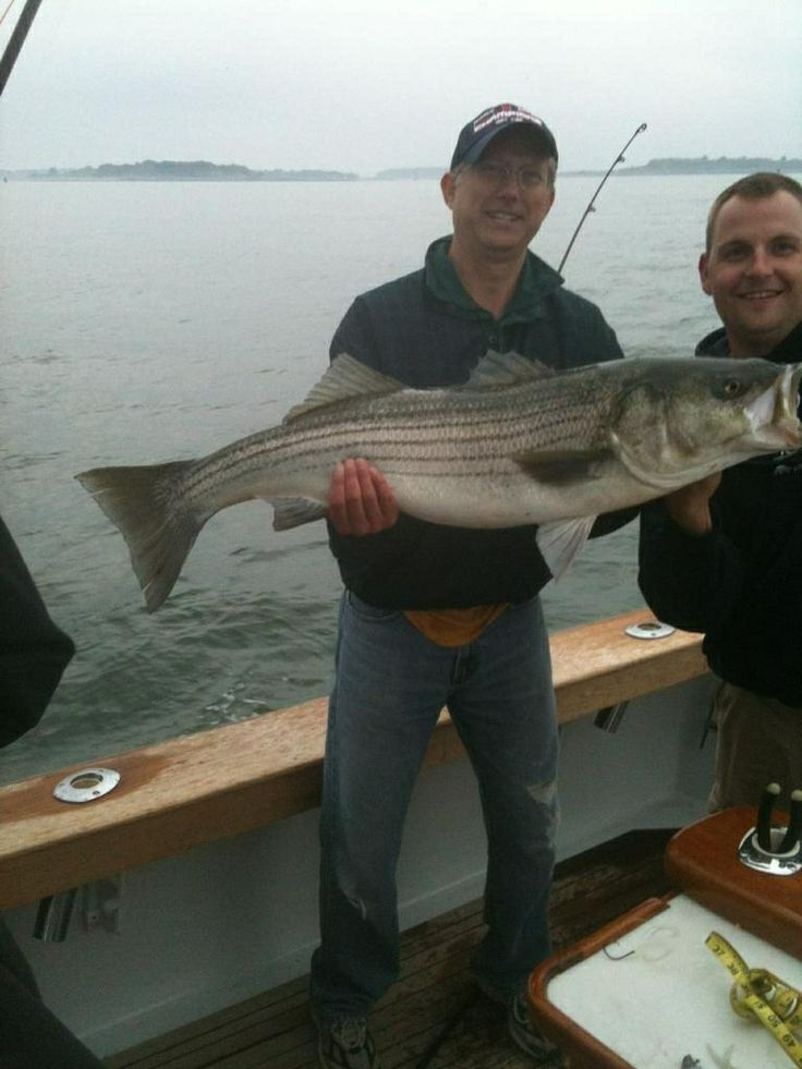 The biggest fish book measured 41 the fishing has for Is the fishing good today