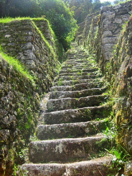 Inca Trail to Machu Pichu, Peru. Looks as if its a trail taking you back in time