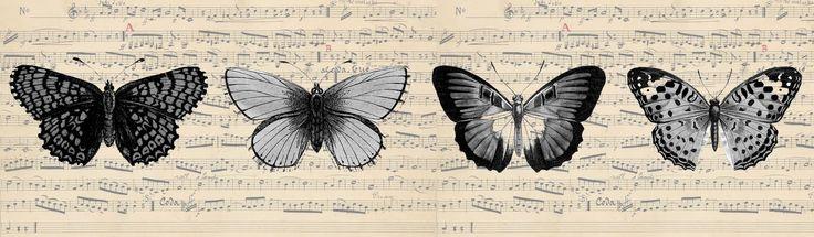 Butterflies - Horizontal Álbum de imágenes para la inspiración (pág. 142) | Aprender manualidades es facilisimo.com