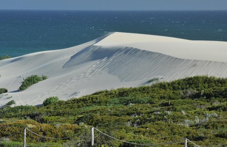 De Hoop Nature Reserve | Globetrot – Connecting the travel market