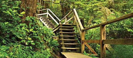 Pacific Rim National Park, British Columbia
