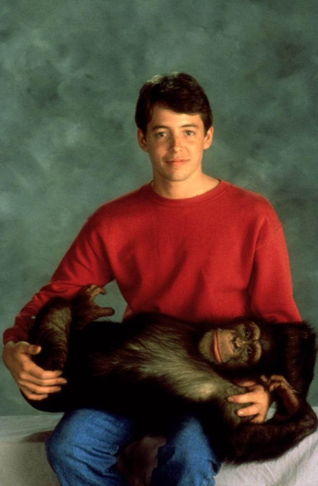 is matthew broderick gay