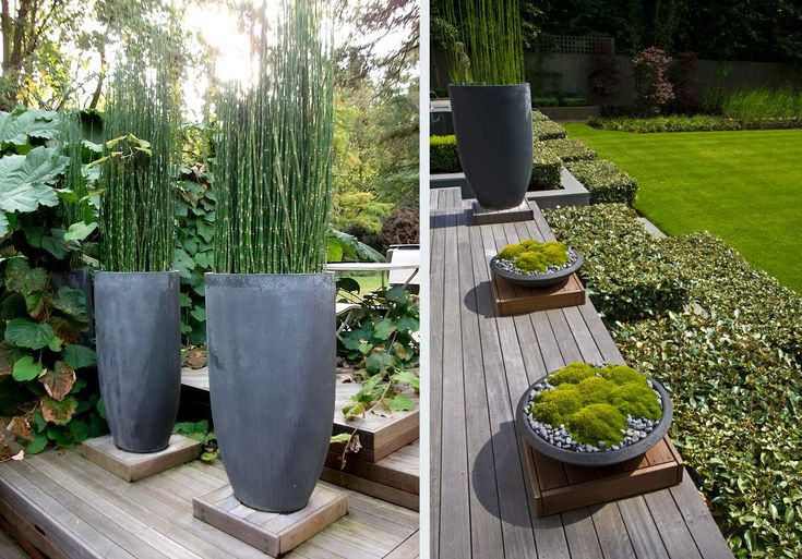 'We design most of our own planters. By using architectural planters made of hardwood, stainless steel or even glass re-inforced concrete, we can create a sense of scale and even enclosure.'