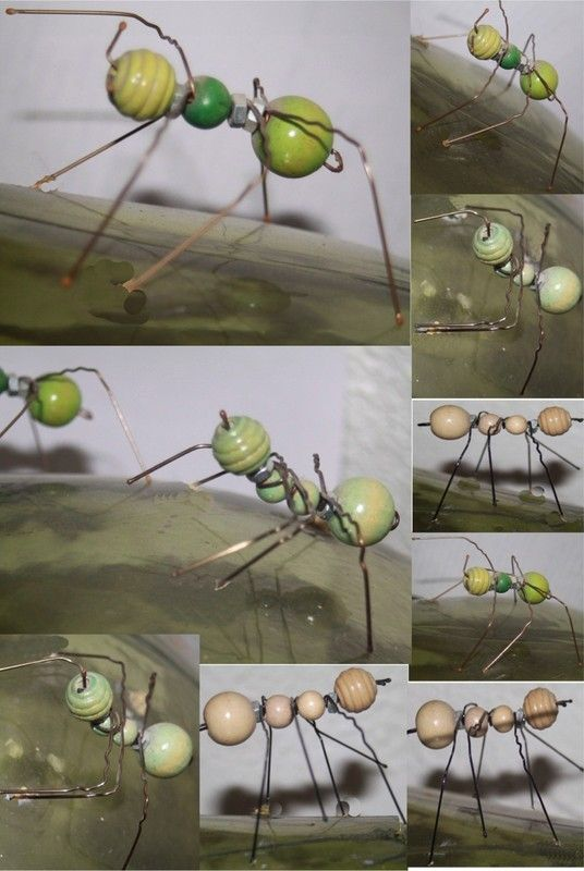 les 25 meilleures id es de la cat gorie fourmis sur pinterest science science trange et. Black Bedroom Furniture Sets. Home Design Ideas