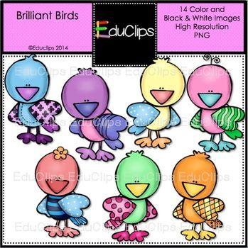 FREE Brilliant Birds Clip Art Bundle