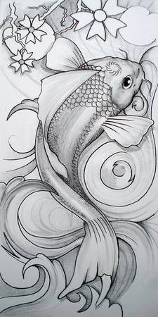 "Stunning ""Koi Fish"" Drawings And Illustrations For Sale On Fine ...                                                                                                                                                                                 More"