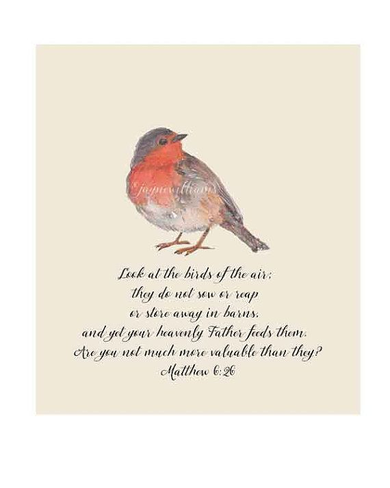 Robin birds of the air Matthew 6 26 Bible quote print by Jayneart