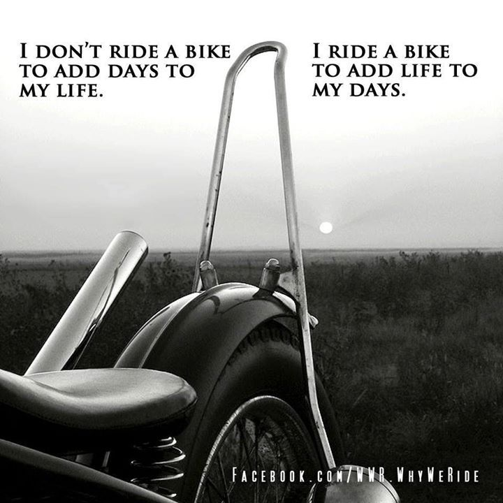 17 Best Images About Biker Quotes On Pinterest