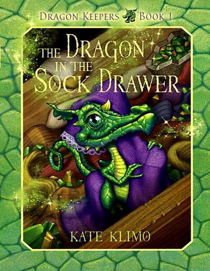 """The Dragon in the Sock Drawer"" Book Review"