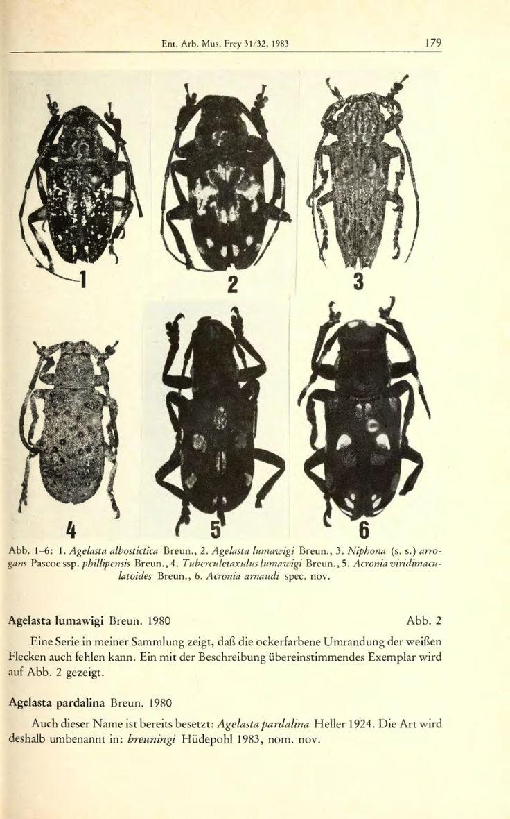 Anmerkungen zu den Typen der von Dr. Stephan von Breuning 1980 neu beschriebenen Lamiinen-Arten von den Philippinen, nebst Beschreibung einer neuen Art der Gattung Acronia Westw - BioStor