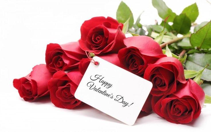 Valentine+Dan+Bunga+Mawar