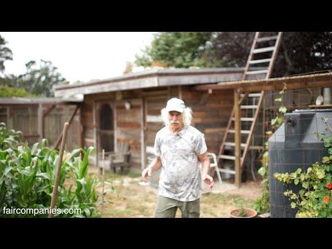 2 Lessons from 40 Years of Self-Reliance on a Half-Acre Homestead - Walden Labs