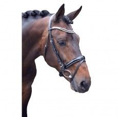 Beautiful leather bridles from Equi-Luv. Stand out in the show ring!