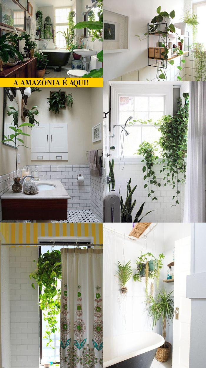 Plantas no banheiro pode?
