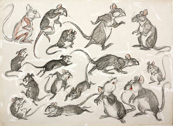 Collection of 14 sheets (11'' x 14'') with drawings and watercolor of a rat in various poses (some with a cape) titled: 'Shorty' by Preston Blair, (American 1908-1994), five mounted to card stock