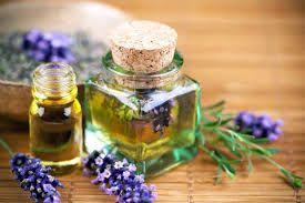 Эфирные масла, композиции и парфюмы