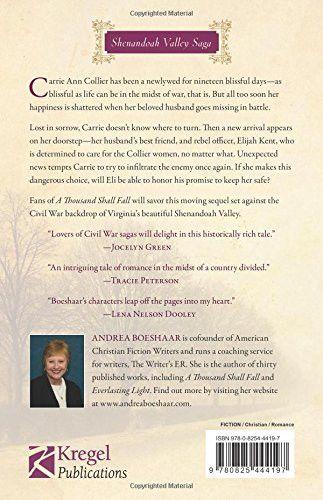 Too Deep for Words: A Civil War Novel (Shenandoah Valley Saga)