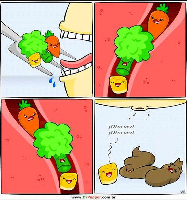 El divertido camino de las verduras. #humor #risa #graciosas #chistosas #divertidas